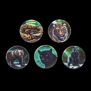Bild von Klettie-Set Dschungel 5-tlg.
